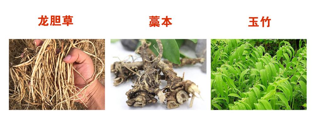 玉竹谷中药材种植专业合作社